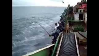 صيد السمك بدون تعب ماشاء الله