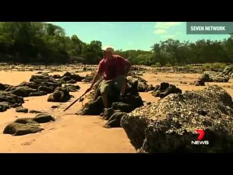 Man trapped on island by a crocodile
