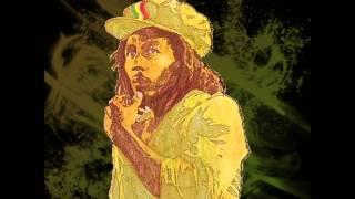 Bob Marley - Crazy Baldheads (Cee-Roo Remix)