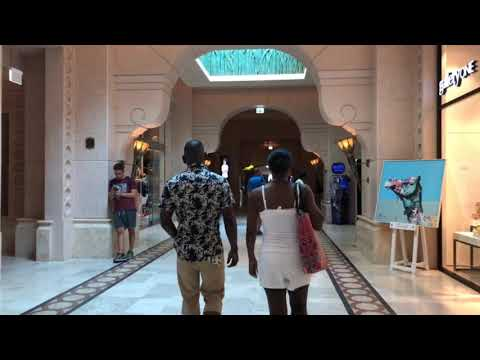 Jumeira Palm Islands Tour   Dubai   2019