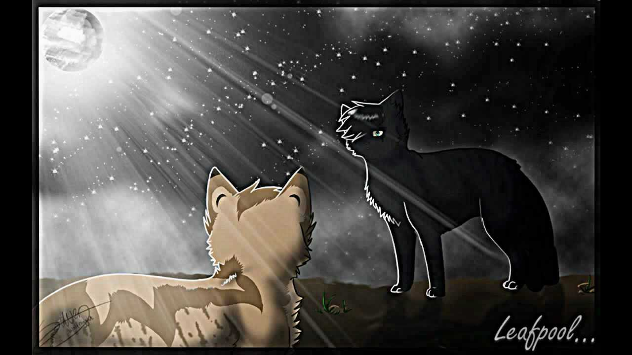 leafpool and crowfeather youtube