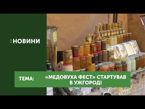 "В Ужгороді стартував фестиваль ""Медовуха-фест"""