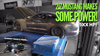 Pt.8 | 2JZ Mustang hits the DYNO!
