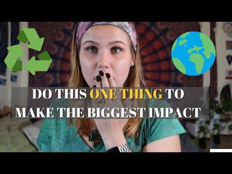 Animal Agriculture Environmental Impact   Go Vegan    Vlogmas 2020 Day 10