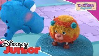 Doctora Juguetes: Momentos Mágicos - Caos en el veterinario | Disney Junior Oficial