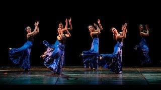 2015 - Lions Club Cecina - La Danza per la Dislessia