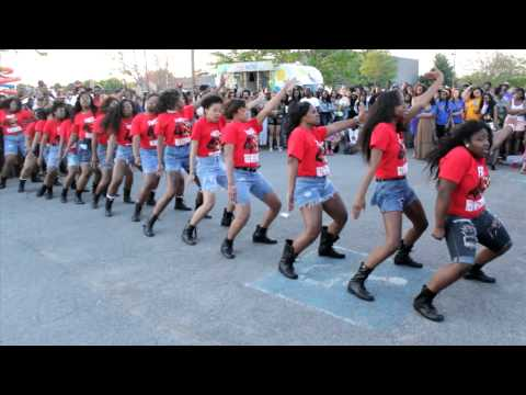 Iota Tau Chapter of Delta Sigma Theta Sorority, Inc. Stroll Off 2014