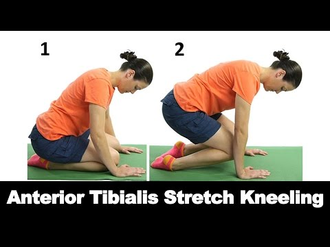 Anterior Tibialis Stretch Kneeling Ask Doctor Jo