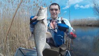 Рыбалка на трофейного жереха в Дельте Волги