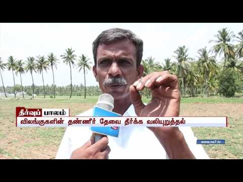 Wild animals badly affected by lack of water in Sathyamangalam forest | News7 Tamil