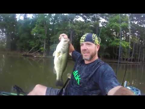 Lake Wateree Bass Frenzy