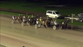 Vidéo de la course PMU CHAMPIONNAT D'HIVER (REVANCHE)