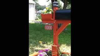Building A Mailbox