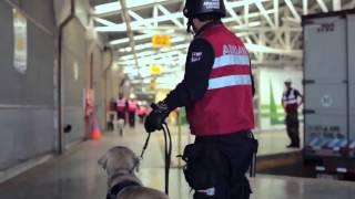 Video Institucional Del Servicio Nacional De Aduanas