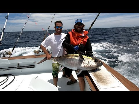 OBX Deep Sea Fishing - Oregon Inlet, NC - Tuna And Dolphin