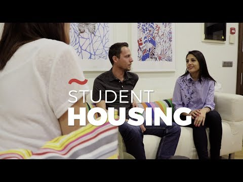 Don Quijote Accommodation -  Student Housing