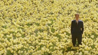 Самые красивые кадры в истории кино