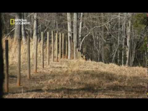 Doomsday Preppers - Español - Documental Completo