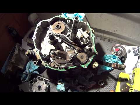 250ex oil pump chain and timing chains stretched