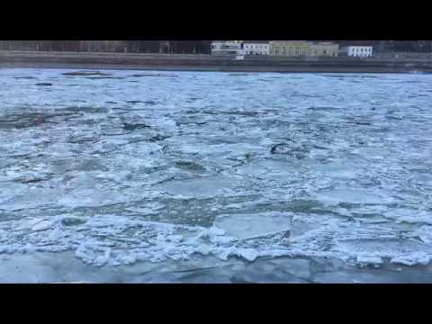 Sheets of ice on the river Danube