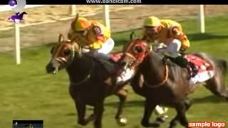 TJK TV canlı at yarışı izle ( Günün Koşuları video klip )