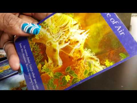 TWIN FLAME / SOULMATE CLIENT READING - HEJ  ALSKLING (HELLO LOVE)
