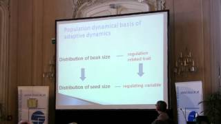 Speciation 2010: Liz Pasztor - Ecological theory and mechanisms of speciation