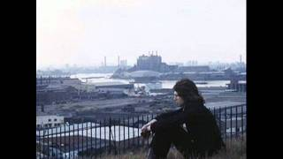 Watch Nick Drake Come Into The Garden Introduction video