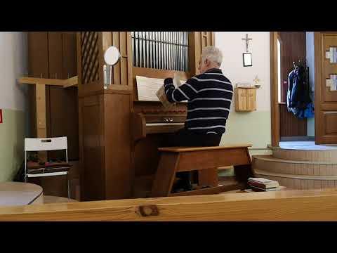 Изумительно красивая игра на органе.