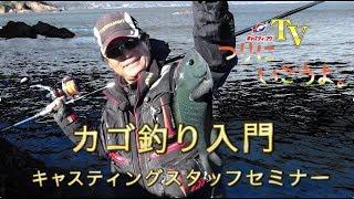 キャスティングTV【つりにいこうよ。】カゴ釣り入門