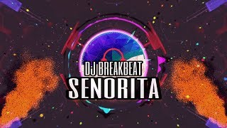 Baixar BREAKBEAT SENORITA 2019 - SHAWN MANDES FT CAMILA CABELLO [ BREAKBEAT SINGLE 2019 ] + LINK