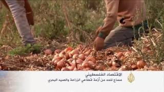 الاحتلال يضيق على قطاع الزراعة الفلسطيني