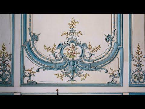 🎥🔴 Live - La restauration de l'appartement du Dauphin - Frédéric Didier