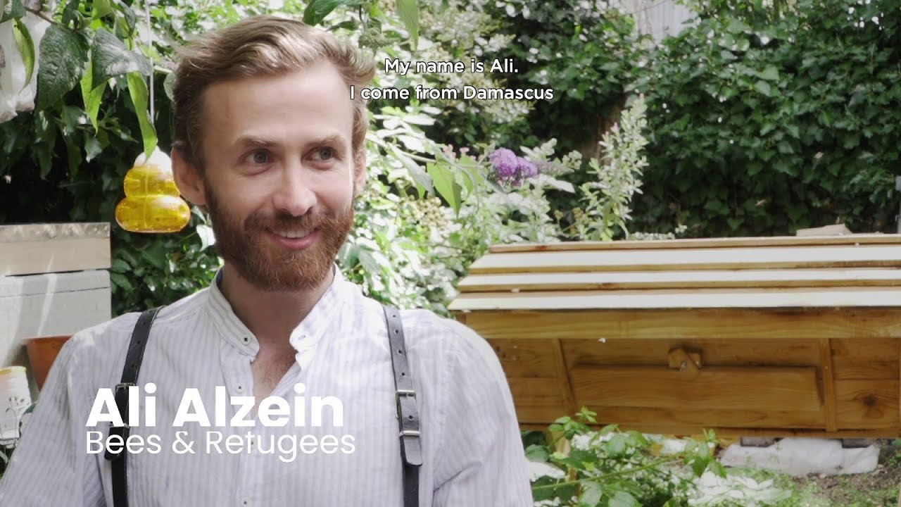 Meet Ali Alzein, founder of Bees & Refugees