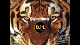 Jessie J - Wild (Alessandro Kalero & Thiago Costa Tribe Remix)