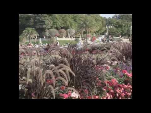 Люксембургский сад