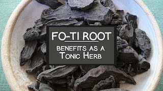 Fo-ti Root - He Shou Wu Benefits as a Tonic Herb