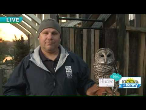 New at Cleveland Metroparks Zoo