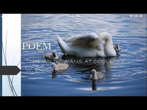 Hindi Explanation of The Wild Swans at Coole by W  B  Yeats