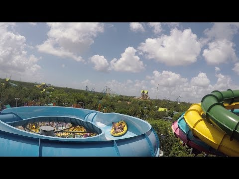 Our Day At Aquatica For Orlando Water Park Week | Quick Queu