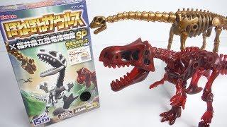 ほねほねザウルス×福井県立恐竜博物館SP 全8種 開封 Dinosaur Figure スペシャル フクイティタン ティラノサウルス 食玩 Japanese candy toys thumbnail