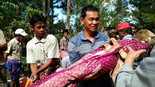 Ini yang biasa orang katakan mayat berjalan di Toraja, sebenarnya ini adalah tradisi Ma' Nene'