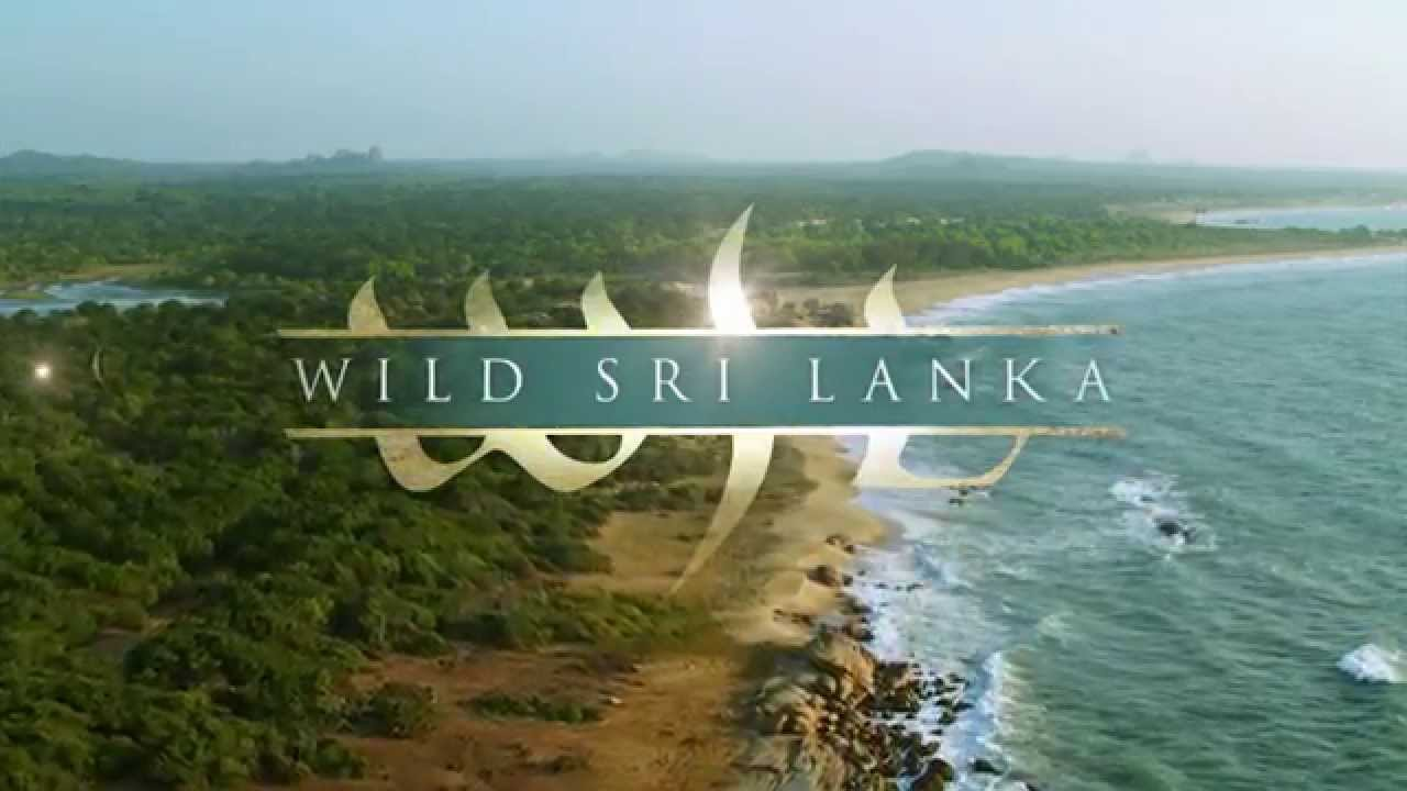 Wild Sri Lanka - Coast of Giants Teaser