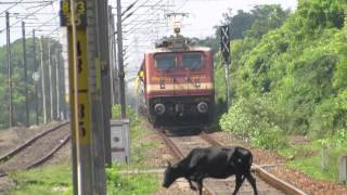 16724 TVC-MS Ananthapuri Express with RPM WAP-4 in lead