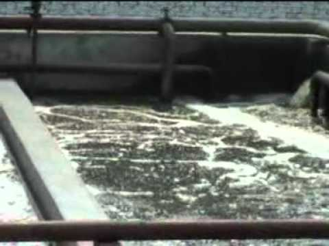 Industrial waste water.mp4