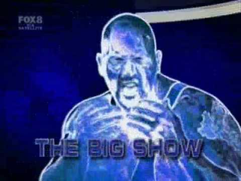 WWE Survivor Series 2008 Matches