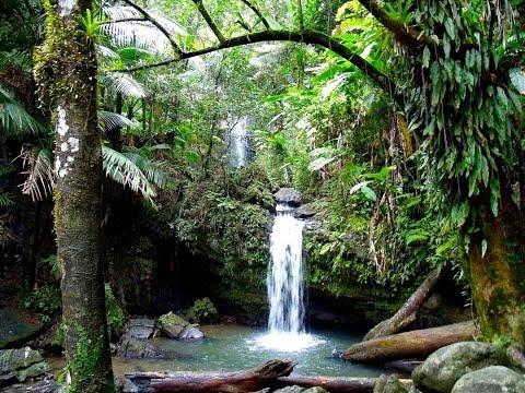 Puerto Rico - Riquezas Ecológicas