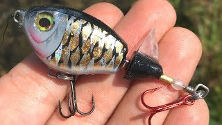 UltraLight Whopper Plopper | One Day Build to Catch