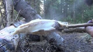 Жарка рыбы в тайге быстро.