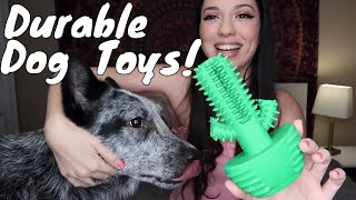 Zorro's Most Durable Dog Toys! | Favorite Amazon Dog Toys | Dog Toy Review